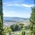 vinha · Itália · toscano · outono · árvore · vinho - foto stock © w20er