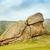 park · Moğolistan · ev · çim · doğa · manzara - stok fotoğraf © w20er