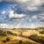 şaşırtıcı · Toskana · manzara · gündoğumu · İtalya · ağaç - stok fotoğraf © w20er