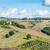 paisagem · toscana · natureza · rural · Itália · hills - foto stock © w20er