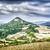 Toskana · manzara · sarı · gökyüzü · İtalya · ev - stok fotoğraf © w20er