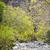 riverbed wadi bani habib stock photo © w20er