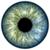 解剖 · 眼 · 美しい · 青 · デザイン · 男 - ストックフォト © w20er