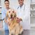 weterynarz · psa · medycznych · biuro - zdjęcia stock © wavebreak_media