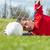 fiú · játszik · piros · labda · izolált · fehér - stock fotó © wavebreak_media