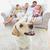 счастливым · матери · дочь · диван · гостиной · домой - Сток-фото © wavebreak_media