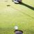 golfer putting ball on the green stock photo © wavebreak_media