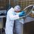 Essen · Produktion · Maschine · Fabrik · Milch - stock foto © wavebreak_media