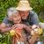 любящий · пару · саду · портрет · счастливым · семьи - Сток-фото © wavebreak_media