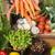 farmer showing his organic carrots stock photo © wavebreak_media