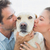 happy couple kissing their yellow labrador on the couch stock photo © wavebreak_media