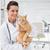 mosolyog · állatorvos · aranyos · macska · karok · orvosi - stock fotó © wavebreak_media