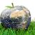 Apfel · Erde · weiß · Karte · Natur · Obst - stock foto © wavebreak_media