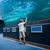глядя · рыбы · цистерна · аквариум · любви · человека - Сток-фото © wavebreak_media