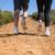 fit couple jogging up mountain trail stock photo © wavebreak_media