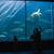 fiatal · nő · szülők · mutat · hal · tank · akvárium - stock fotó © wavebreak_media