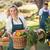 nő · elad · organikus · zöldségek · piac · napos · idő - stock fotó © wavebreak_media
