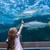 little · girl · olhando · peixe · tanque · aquário · criança - foto stock © wavebreak_media