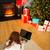 女性 · 座って · カーペット · ラップトップを使用して · 肖像 · 魅力的な - ストックフォト © wavebreak_media