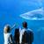 rear view of family watching the tank fish stock photo © wavebreak_media