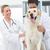 onderzoeken · hond · gelukkig · kliniek · man · werken - stockfoto © wavebreak_media