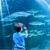 fiatalember · mutat · hal · tank · ujj · akvárium - stock fotó © wavebreak_media