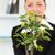 女性実業家 · 工場 · オフィス · ビジネス · セクシー - ストックフォト © wavebreak_media
