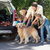 happy family getting ready for road trip stock photo © wavebreak_media
