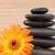 pomarańczowy · słonecznika · czarny · kamienie · tle - zdjęcia stock © wavebreak_media