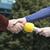 handshake before media interview stock photo © wellphoto