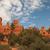 bryce canyon red stock photo © weltreisendertj