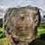 templo · java · Indonésia · viajar · adorar · estátua - foto stock © weltreisendertj