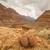 Grand · Canyon · hermosa · paisaje · detrás · 2013 · puesta · de · sol - foto stock © weltreisendertj