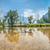 yosemite river view stock photo © weltreisendertj