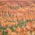 bryce canyon stalactites stock photo © weltreisendertj