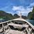 tradicional · barcos · Foto · perfecto · tropicales - foto stock © weltreisendertj
