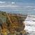 sea birds on a coastal promontory stock photo © wildnerdpix