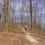 kirándulás · túrázók · sétál · erdő · út · nyom - stock fotó © wildnerdpix