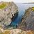 wybrzeża · nowa · fundlandia · sceniczny · widoku · brzegu - zdjęcia stock © wildnerdpix