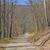 rural · estrada · floresta · natureza · outono · veado - foto stock © wildnerdpix