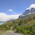 trail into the remote mountains stock photo © wildnerdpix