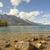 alpine lake in the early morning stock photo © wildnerdpix