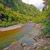 quiet river through a sub tropical forest stock photo © wildnerdpix
