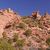 red rocks landscape in the desert stock photo © wildnerdpix