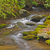 mountain stream in early morning stock photo © wildnerdpix