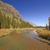quiet stream leading to a mountain lake stock photo © wildnerdpix