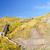 stairway to a coastal beach stock photo © wildnerdpix