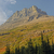 山 · バイソン · モンタナ · ツリー - ストックフォト © wildnerdpix