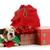 presentes · saco · colorido · natal - foto stock © willeecole