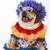 cão · palhaço · padrão · poodle · para · cima · traje - foto stock © willeecole